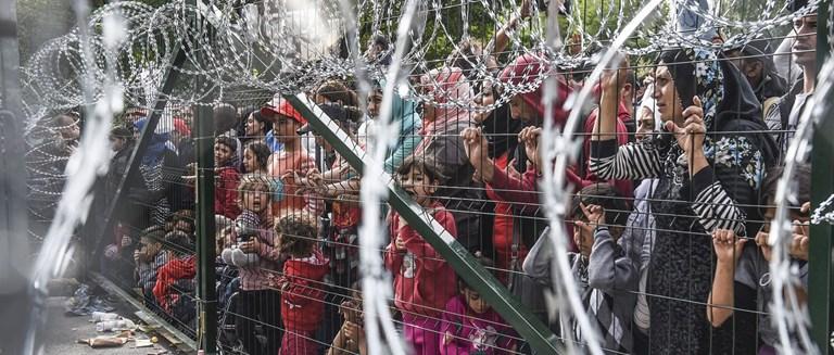 fenced_refugees1